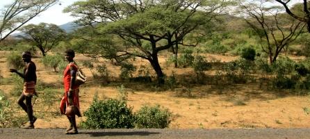 'Wanderer' (Unterwegs nach Hawassa).